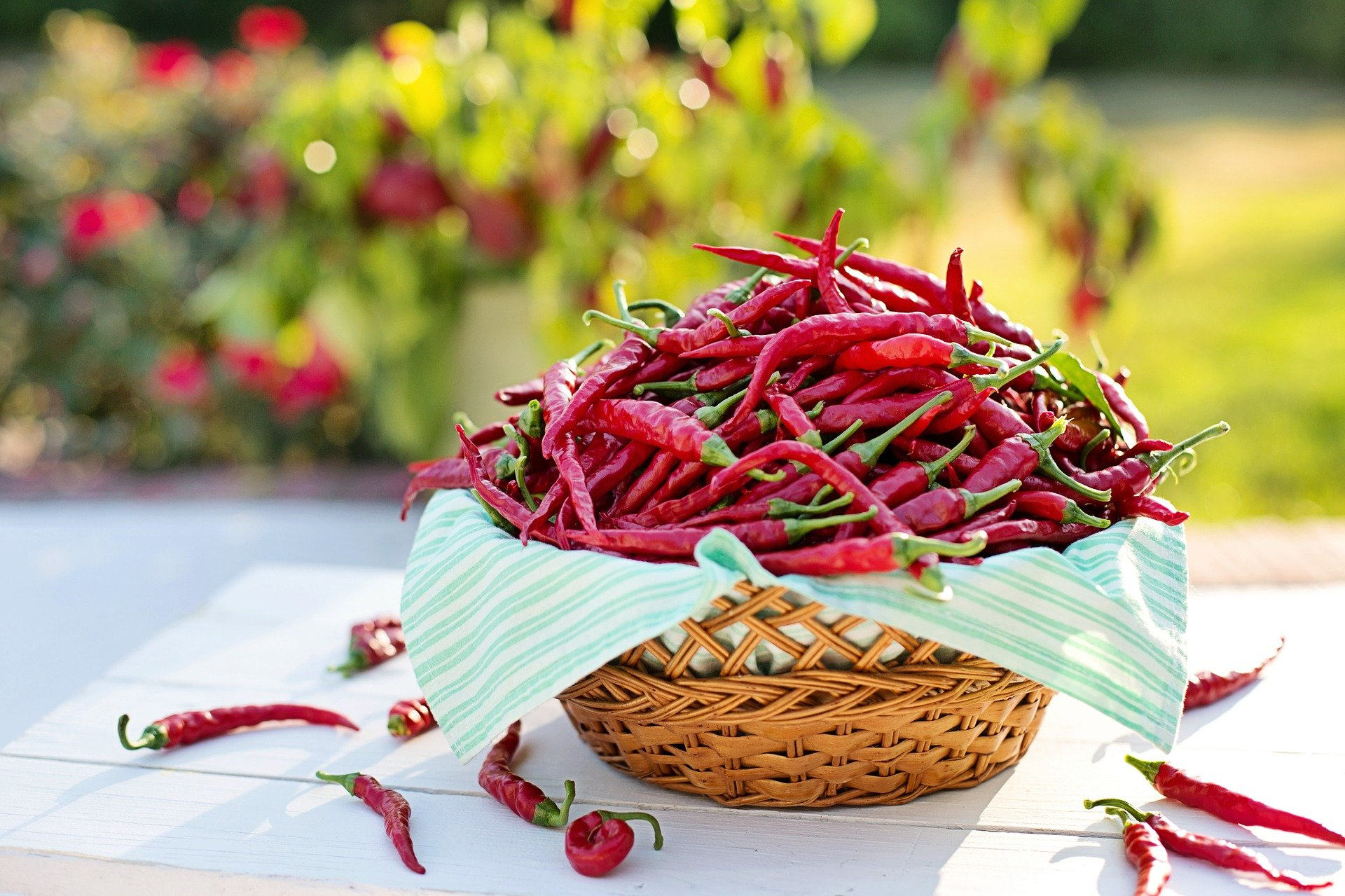 Chiliwiener Würstchen im Naturdarm (1 Paar)